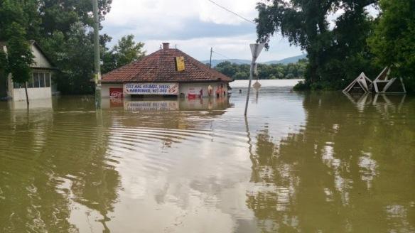 árvíz 2013 veröce